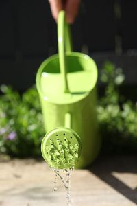 512px-Watering-can-green