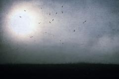 omen-foreboding-destiny-4979626-m