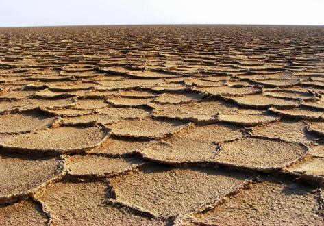 desert-736096_960_720.jpg